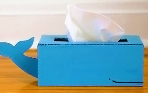 DIY: Earthy tissue box holder