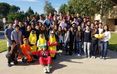 Bringing enlightenment to students with fruits and songs