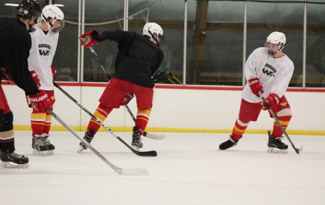 Hockey with heart: playing for the love of the game