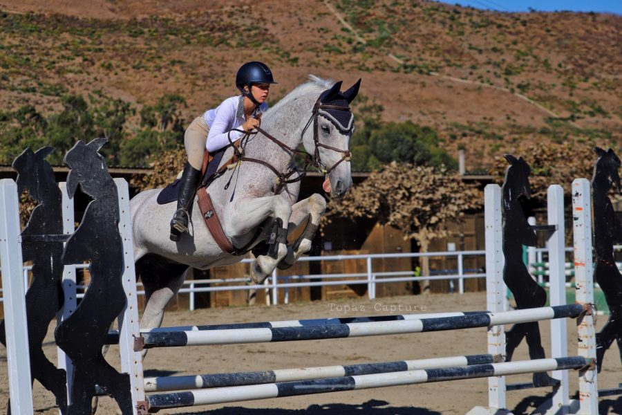"""Equestrian sports extend over a wide field of events, from dressage to polo to show jumping.  Freshman Maddy Seebach has been participating in equestrian competitions since she was four, discovering the sport through her mother, who is now a horse trainer.  """"Horseback riding is a lot of hard work. It's fun and it's stressful. Horse shows do get a bit crazy. They're never on time,"""" Seebach said. The sport has a wide variety of events. Seebach participates in one of the wider known ones, show jumping.   """"You go in an arena and jump a course of jumps,"""" Seebach said. """"There are different levels of difficulty, based on the arena and how high the jumps are.""""  Through riding competitions and exchange programs, Seebach has met new people of diverse backgrounds. Seebach plans on continuing equestrian sports through high school and into college. """"Overall, it's a lot of hard work and really fun. It can get a bit stressful and crazy, but you meet new people and learn life skills,"""" Seebach said. Equestrian sports has given Seebach a world of new experiences, people and activities. The sport has developed her concentration, work habits and her ability to stay calm in stressful situations."""