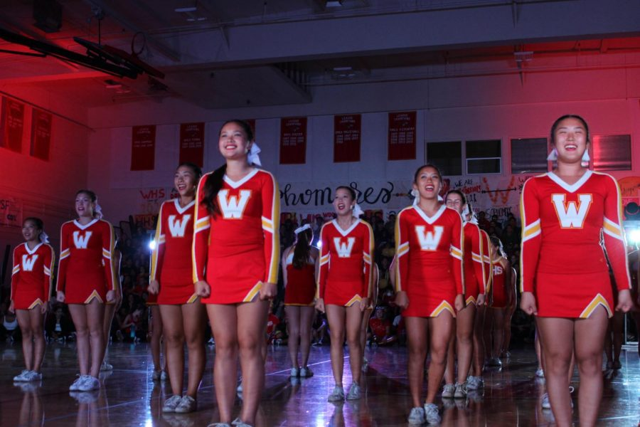 Cheerleaders proudly stand in a choreographed performance.