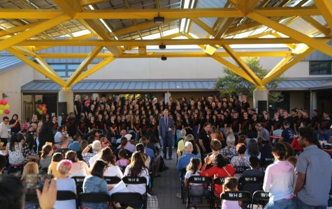 A Midsummer Night's Sing Sets the Tune for Woodbridge Choir