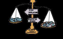 Beach Litter Causes Beach Bummers