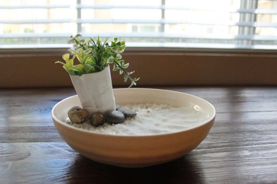 Creating+your+own+DIY+zen+garden+can+be+a+stress+relieving+and+aesthetically+pleasing+activity.