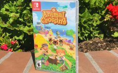 The wildly popular Nintendo game Animal Crossing: New Horizons makes a huge splash in the Nintendo Switch game series.