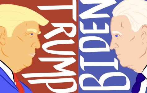 Head to Head: Trump and Biden in the Presidential Race