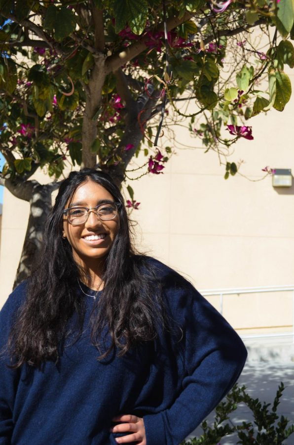 Senior+Anika+Parekh+hopes+to+improve+her+art+skills+as+well+as+increase+her+following+on+Instagram+and+TikTok.