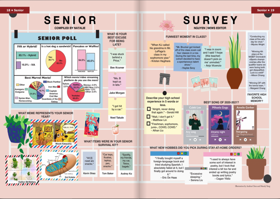 WHS+Senior+Survey